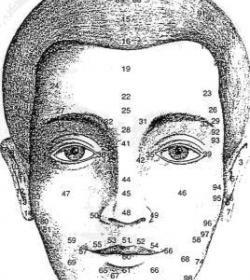 Gesichtsdiagnose Workshop